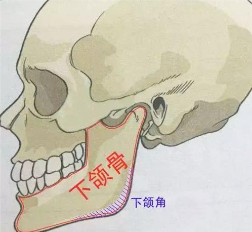 磨骨和削骨的区别在哪里?